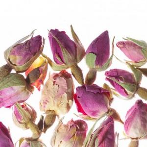 French Rose / Французская роза